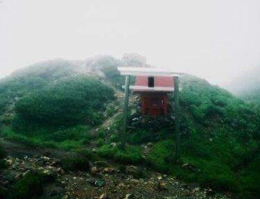 女性的な花の山~夕張岳~(北海道)