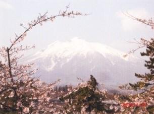 弘前城から岩木山