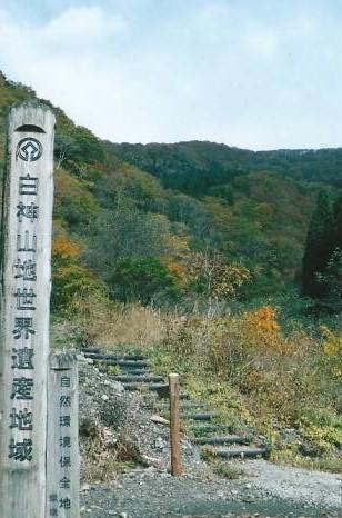白神山地世界遺産地域