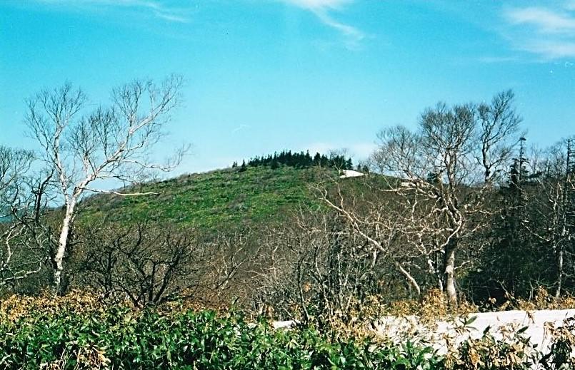 青松葉山(岩手)
