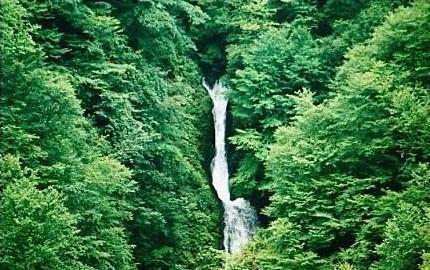 峠ノ神山と堺ノ神岳(岩手)