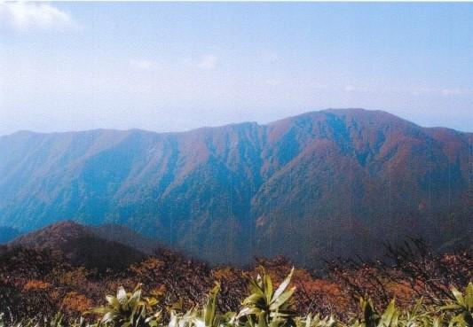 作日登った白岩岳の岩稜