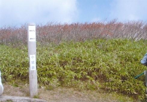 小鷲倉山頂(1364m)