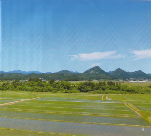 金山三山(薬師山・中の森・熊鷹森)