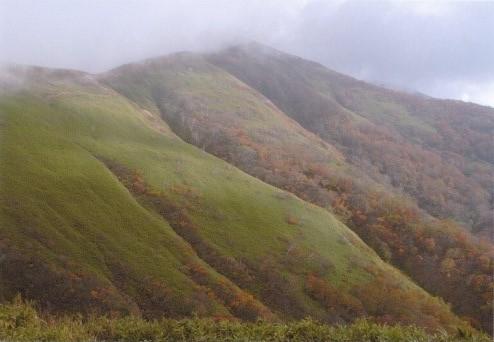 小杉山~小鷲倉への稜線