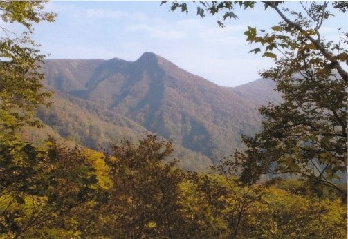 甘露水登山口から甲山を望む