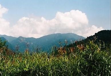 佐武流山が姿を現す 雑魚川