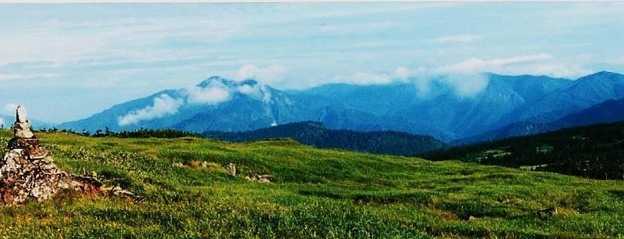 天上の広大な高層湿原②