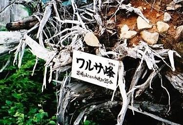 ワルサ峰(ツルハシで開削した跡が)
