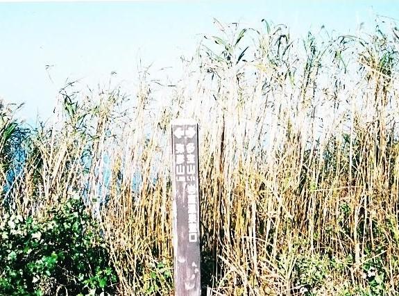 弥彦山 展望台