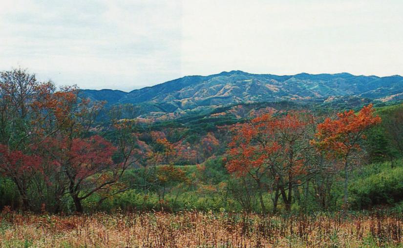土岳の山頂は開けた草地 思えない伸びやかさ