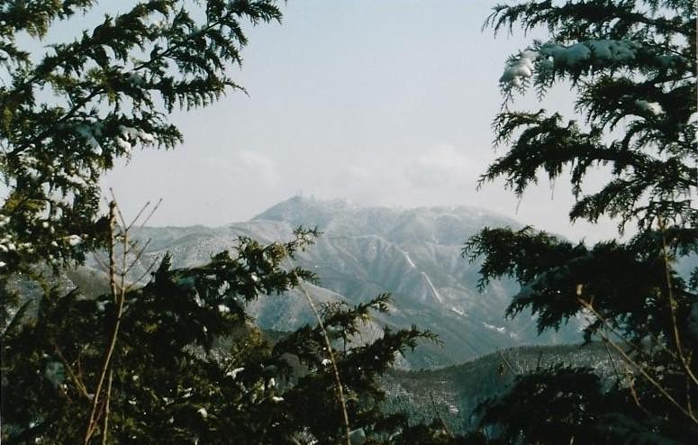 達沢山~薄化粧した三ッ峠山を望む