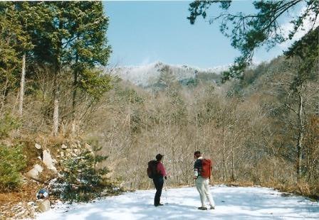 林道終点から達沢山を仰ぐ登山口は左