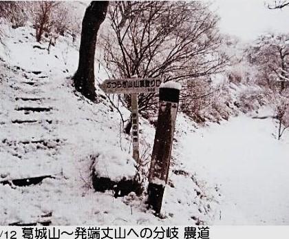 葛城山~発端丈山への分岐