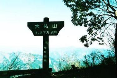 種類豊富な混交林を抜けて山上楽園へ~大札山~(静岡)