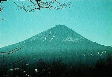 富士山と三湖も望める山~足和田山・羽根子山~(山梨)