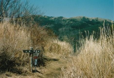 南郷山への分岐