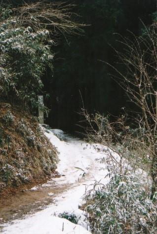 雪道を行く