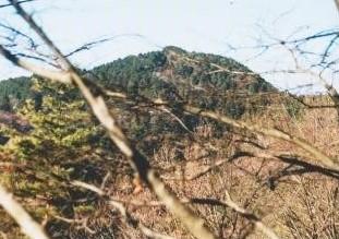 山麓から大岩山