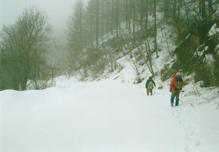 中津川林道雪道を下る