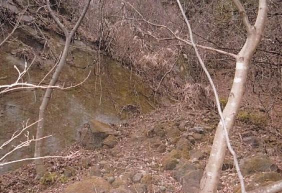 薮こぎで直滑降で下山した  落石した岩石