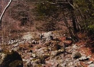 こんな花樹岩がゴロゴロするところをいく