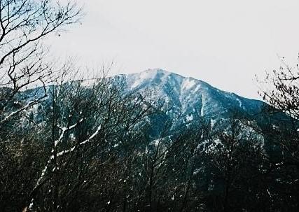 大きな山体の大山