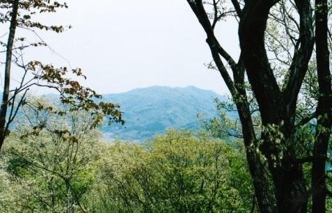 山頂~晃石山