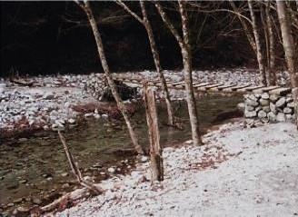 川の水はきれいに透き通っている