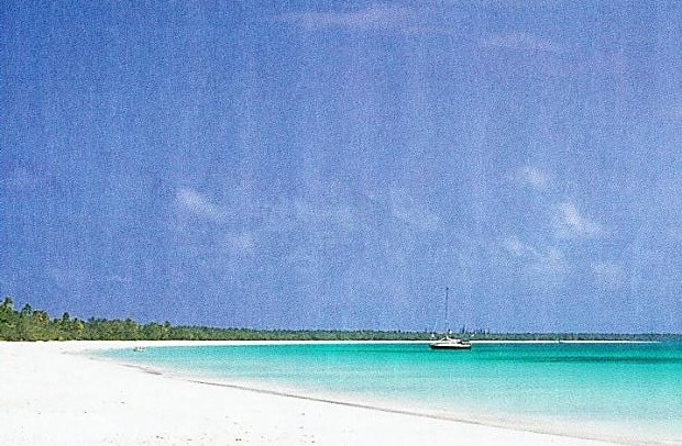 座間味の浜辺