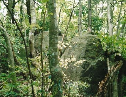 大岩が行く手を阻む 城跡の残骸