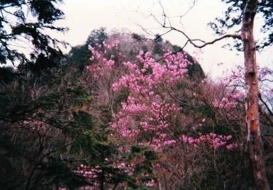 西剣ヶ峰を望む