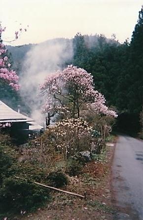 加蘇山神社登山口