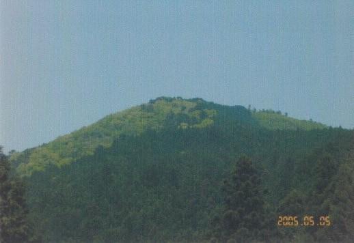 川井~棒ノ折山
