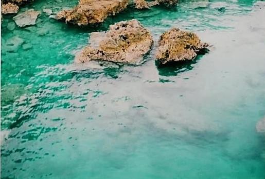 海辺を散策