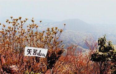 地元では○○山と呼ばれる矢筈山(静岡)