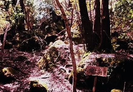 池の下の下山口