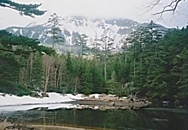 八ヶ岳のみどり池|所JAPANで紹介された絶景の秘湯命がけ温泉夏SP(長野)