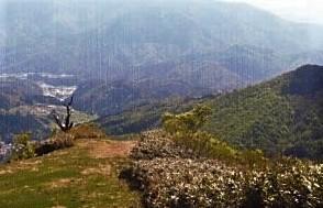 昨日登った妙見山