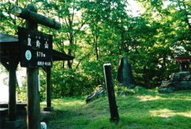 奥武蔵の三山に愛犬とハイキングへ|夜景も楽しめる登谷山|明るくのどかな皇鈴山|国民休養地の蓑山(埼玉)