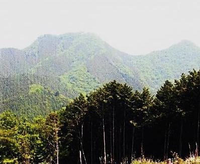武川岳登山道~伊豆ヶ岳を望む