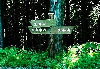 グミノ木峠 ここから往復歩く