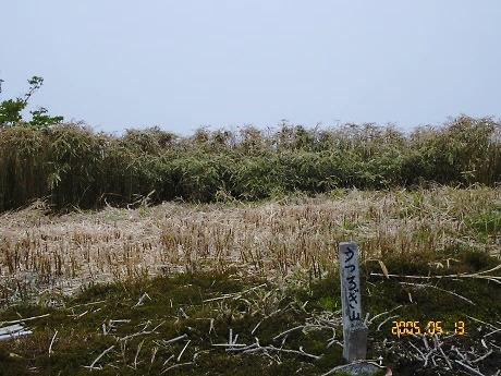 ウツロギ山1458m