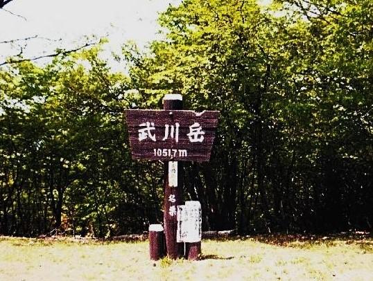 武川岳・山頂