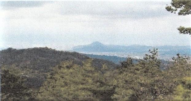 飯道山山頂より
