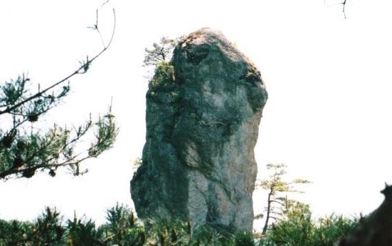 植生があるジジ岩