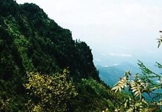 うだの沢のトミーから岩峰の山頂と川上村