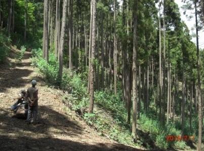 ブルで掻き上げた道を登る