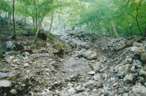 岩が押し流された枯沢